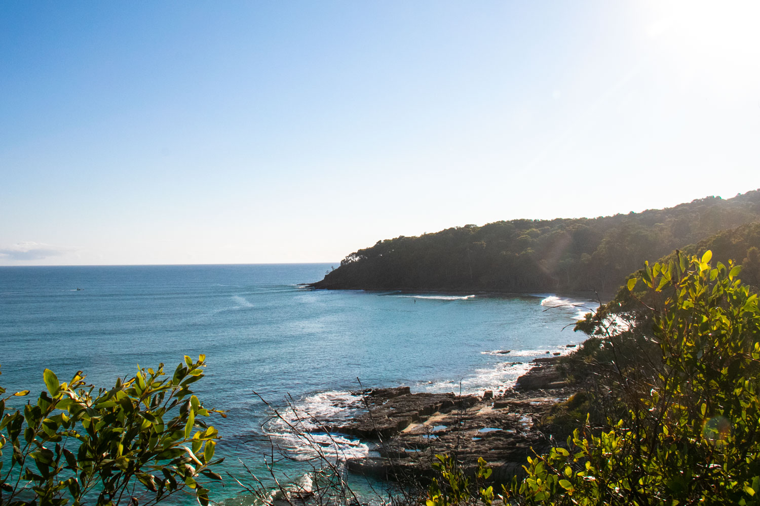 The Best Walking Track In Noosa National Park Noosa Civic
